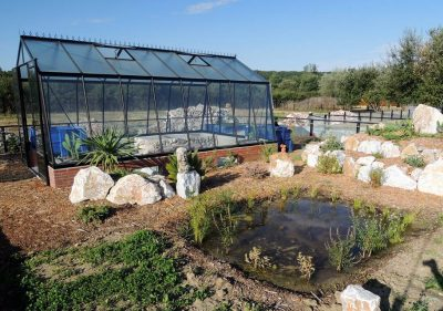 The animal-friendly greenhouse