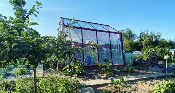 3 tips against dryness in the vegetable garden