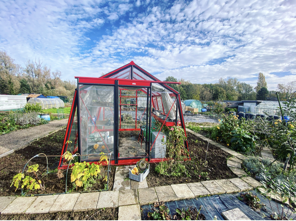 CLEANING YOUR GREENHOUSE IN THE FALL – PART 2
