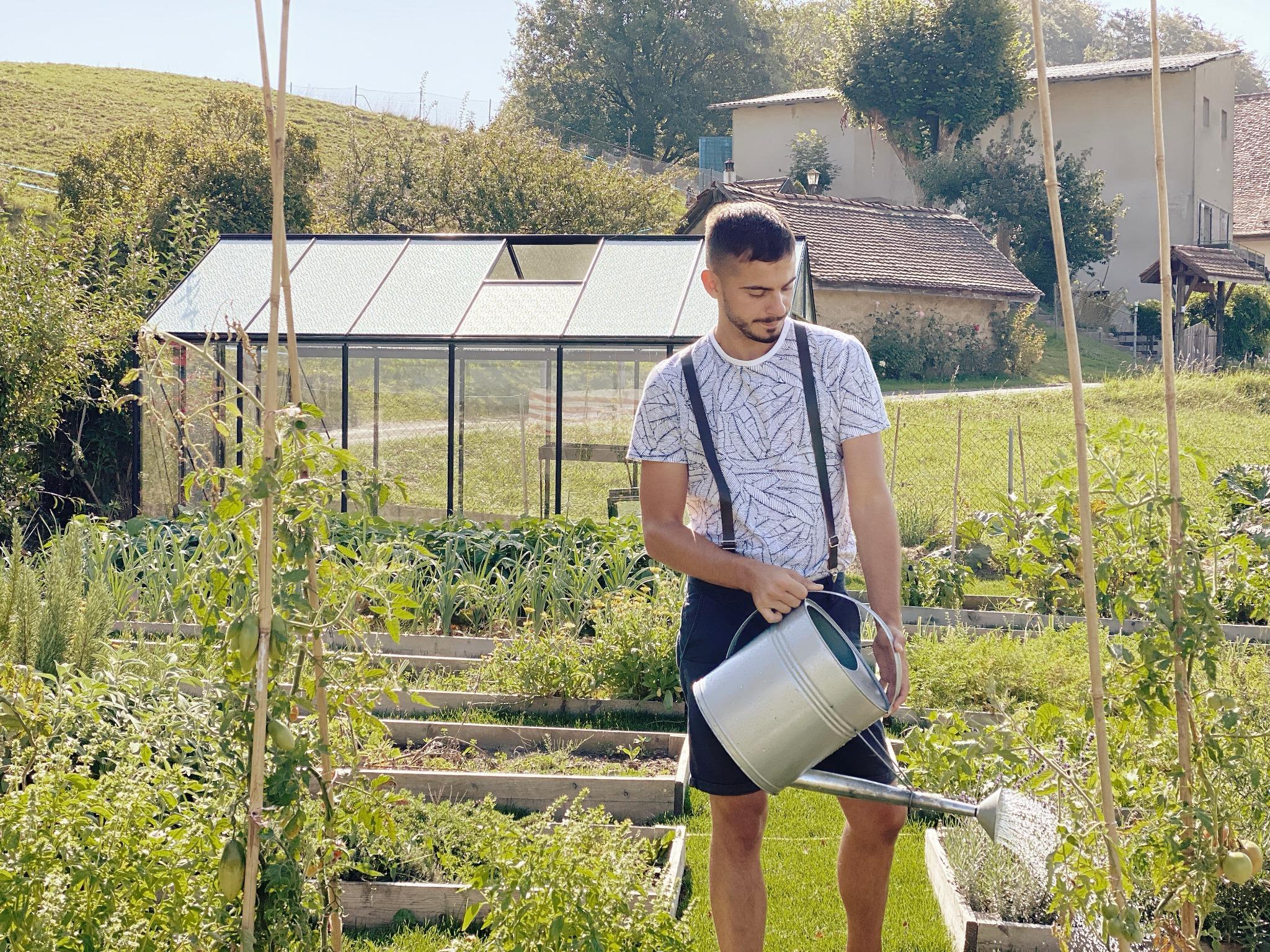 Cultiver les légumes primeurs sous serre